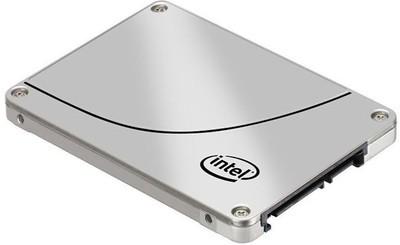 Intel DC S3500 240 GB Laptop Internal Hard Drive (SSDSC2BB240G401)